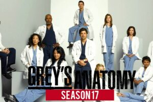 Grey's Anatomy Season 17 Episode 14 Not Airing This Week