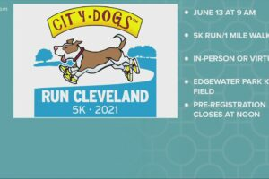 Friends of CITY DOGS Cleveland 5k run this weekend