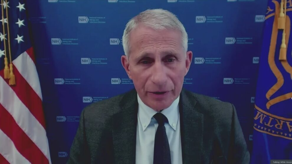 Fauci says US headed in