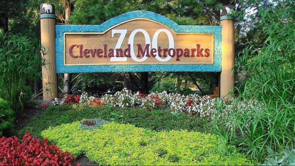 Cleveland Metroparks Zoo, Akron Zoo to administer COVID-19 vaccine to some of their animals